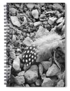 Fallen Feathers Black And White Spiral Notebook