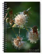 Fallen Flowers Spiral Notebook
