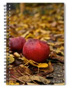 Fallen Fruit Spiral Notebook