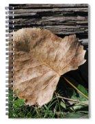 Fallen Leaf Spiral Notebook