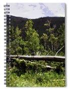 Fallen Tree Spiral Notebook