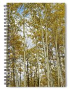 Falling For The Birch And Aspens Spiral Notebook