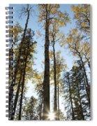 Falling Sunlight Fort Mcmurray Spiral Notebook