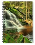 Falling Through The Woods Spiral Notebook