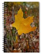 Falling To Earth Spiral Notebook
