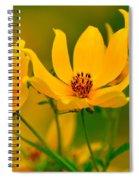 Falls Glory Spiral Notebook