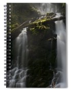 Falls Golden Light Spiral Notebook