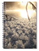 Fanciful Frosty Fractal Forest Spiral Notebook