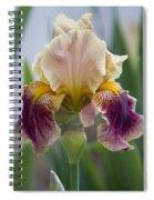 Fancy Dancy Iris Spiral Notebook