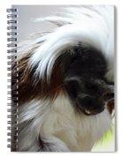 Fancy Fella Spiral Notebook