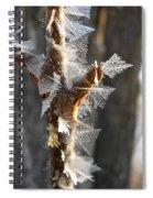 Fancy Fractal Frost Crystals Spiral Notebook