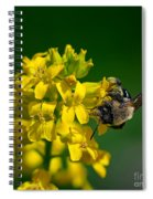 Fanfare For The Common Bumblebee Spiral Notebook