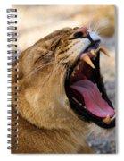 Fangs Spiral Notebook