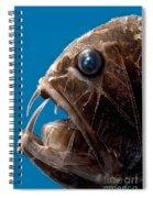 Fangtooth Spiral Notebook