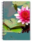 Fantasia II Spiral Notebook