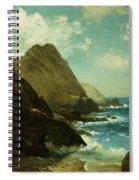 Farallon Islands Spiral Notebook