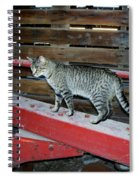 Farm Cat Spiral Notebook