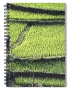 Farmer In Rice Paddy, Elevated View Spiral Notebook