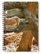 Fawn 2 7769 Spiral Notebook