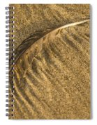 Feather Drag Spiral Notebook