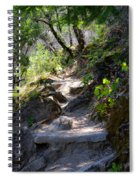 Feather Falls Stairway Spiral Notebook