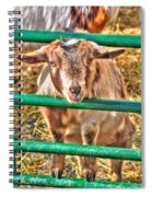Feed Me Or I Will Eat You Lol Spiral Notebook