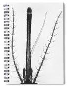 Female Mosquito Proboscis Spiral Notebook