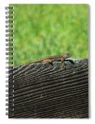 Fence Lizard Spiral Notebook