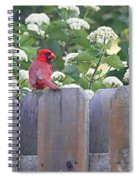 Fence Top Spiral Notebook