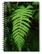 Fern Frond 0576 Spiral Notebook