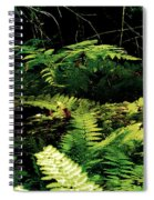 Fern Gully Spiral Notebook