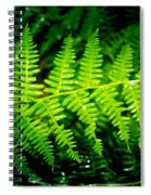 Fern II Spiral Notebook