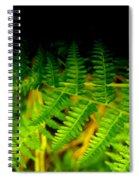 Fern IIi Spiral Notebook