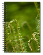 Ferns Fiddleheads Spiral Notebook