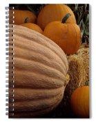 Festive Fall II Spiral Notebook
