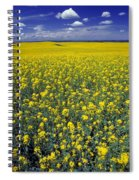 Field Of Canola Spiral Notebook