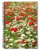 Field Of Daisies And Poppies. Spiral Notebook