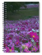 Field Of Flowers Along The Highway  Spiral Notebook