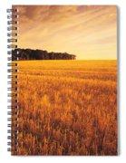 Field Of Grain Stubble Near St Spiral Notebook