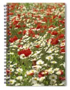Field Of Poppies And Daisies In Limagne  Auvergne. France Spiral Notebook