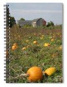 Field Of Pumpkins Spiral Notebook