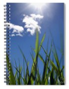 Field Of Wheat In Limagne. Auvergne. France. Europe Spiral Notebook