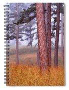Field Pines And Fog In Shannon County Missouri Spiral Notebook