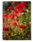 Fields Of Fire Spiral Notebook