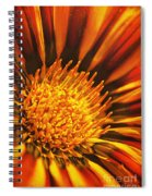Fiery Passion Spiral Notebook