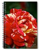 Fiesta Rose Spiral Notebook