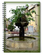 Fig Tree Fountain In Cassis Spiral Notebook