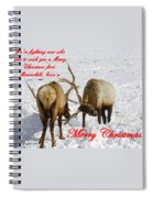 Fighting Over Wishing You A Merry Christmas Spiral Notebook