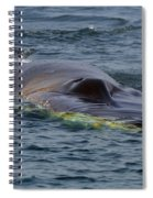 Fin Whale Charging Spiral Notebook