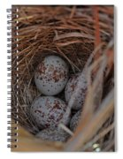 Finch Nest With Eggs  Spiral Notebook
